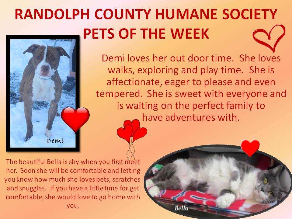 This image has an empty alt attribute; its file name is RANDOLPH-COUNTY-HUMANE-SOCIETY-69.jpg
